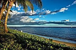 Lahaina Shores 202