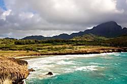 Waikomo Stream 501
