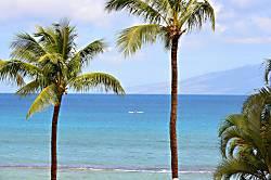 Paki Maui 123