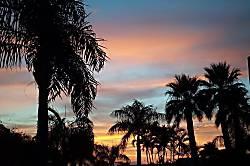 The Palms at Wailea 306