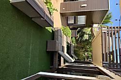 Pulelehua Nani