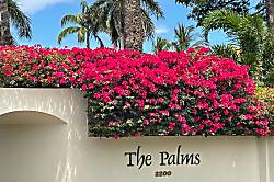 The Palms at Wailea 1301