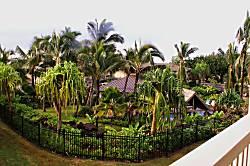 Nihilani Resort-Pepelani Loop