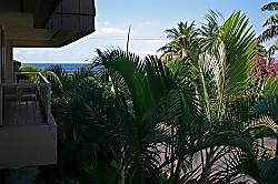 Maui Banyan F-206