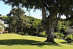 Kiahuna Plantation 102