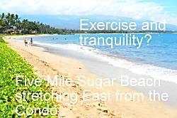Sugar Beach Resort 417