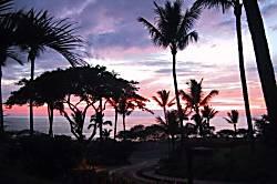 Maui Kamaole A115
