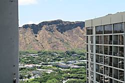 Waikiki Banyan
