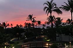 Maui Kam F202