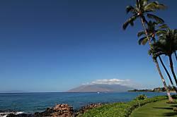 Royal Mauian #118