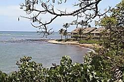Kahana Reef 322