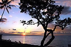 Kahana Reef Condo