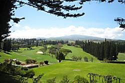 Kapalua Golf Villas Building 20