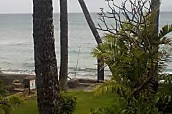 Maui Sands 714