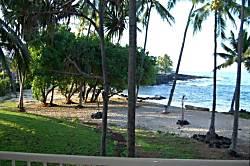 Kona Reef Condo Rental
