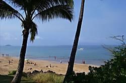 Maui Vista 2308