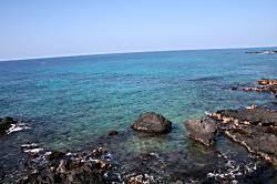 Hale Honu ~ On Turtle Cove