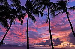 Polynesian Shores Condo 104