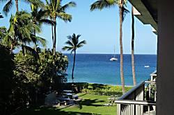 Maui Whaler 365