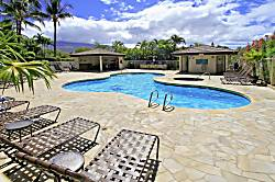 Maui Banyan for 1-2