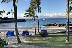 Mauna Lani Resort Palm Villas