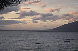 Royal Mauian 515