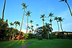 Maui Sands #1E Hale Ohana