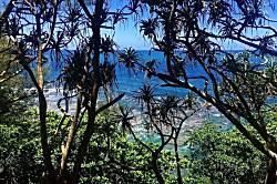 Living Aloha Princeville