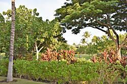 Fairways at Mauna Lani 1604