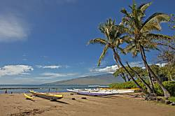 Kihei Bay Surf #208
