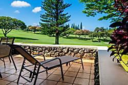 Kapalua Golf Villa 14P 1&2