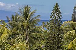 Palms at Wailea #1005