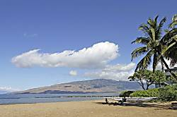 Kihei Bay Surf #123