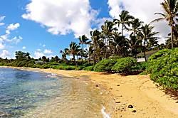 Hale Aloha
