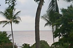 Kona Bali Kai 343