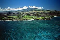 Kona Reef Unit