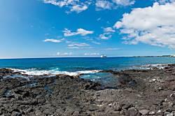 Hale Aloha 135