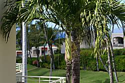 The Palms at Wailea, Unit 202