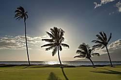 Maui Sunset #A-509