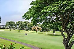 Kapalau Golf Villas 15T2