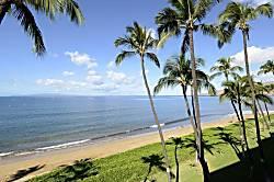 Sugar Beach Resort 221