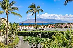 Maui Kamaole L201