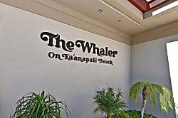 The Whaler 1063
