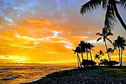 Ohana Beach Retreat