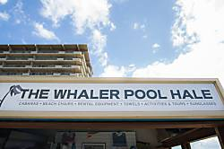 Whalers 465