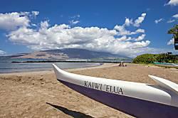 Kihei Bay Surf #109