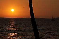 Kihei Bay Surf 258