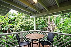 Rain Forest Hideaway