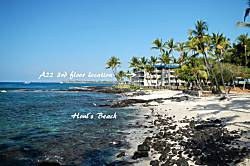 Kona Reef A22
