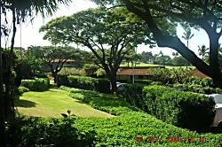 Kaanapali Plantation 15
